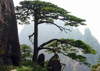 Day 1 - Beijing - Tunxi - Trek in Huangshan