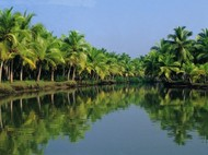 Day 8 - Kovalam - Alleppey - Cochin